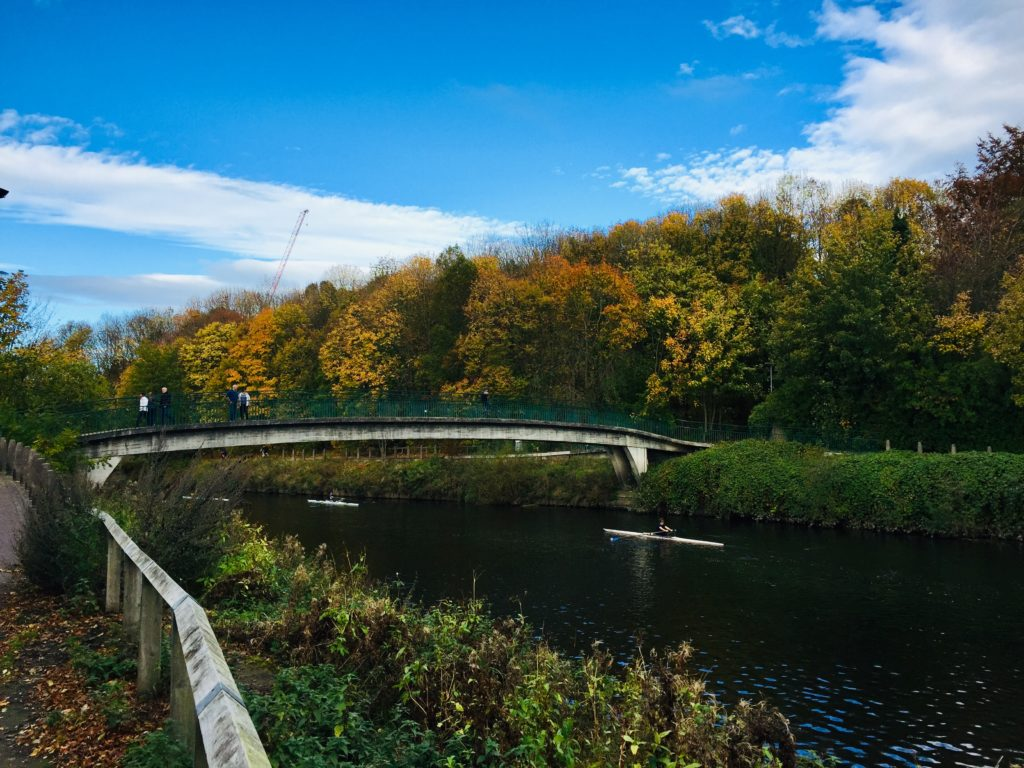 picture of rowers beneath the autumn foliage with baths bridge over the river wear