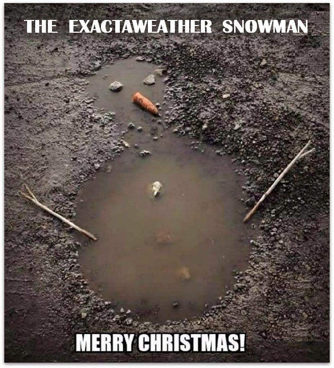 exacta weather snowman - a puddle with sticks, stones and a carrot made to look like a melted snowman