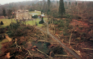 trees felled in the great storm of october 1987