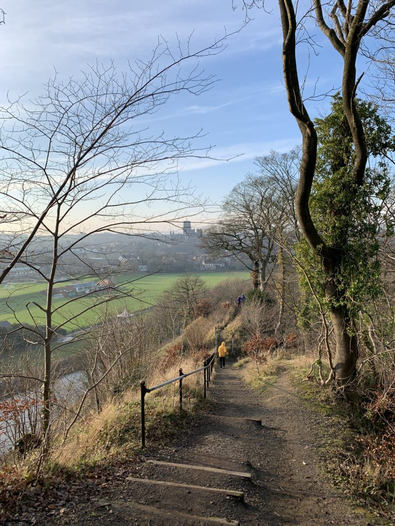 a view across the river wear from pelaw wood, looking towards durham city and the cathedral in the distance