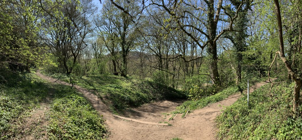 Many paths to take to the River Wear