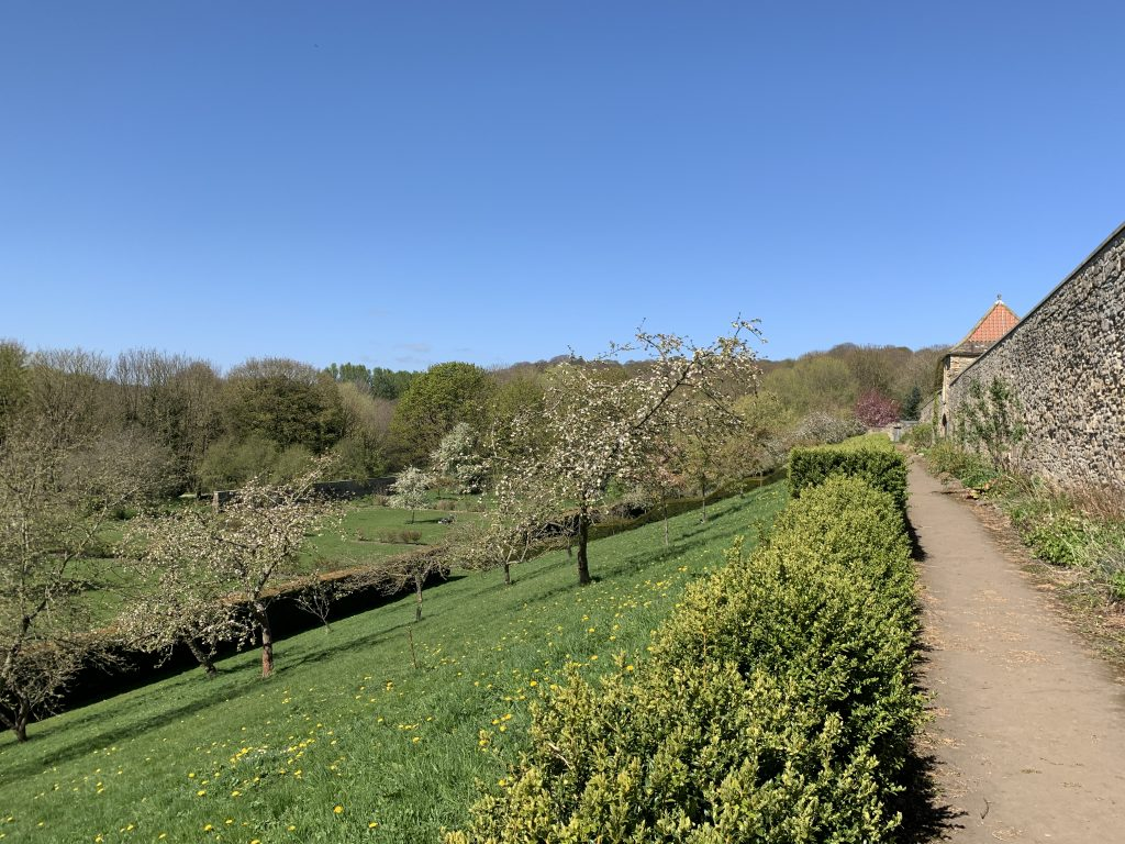 Old Durham Gardens from the terrace (4)