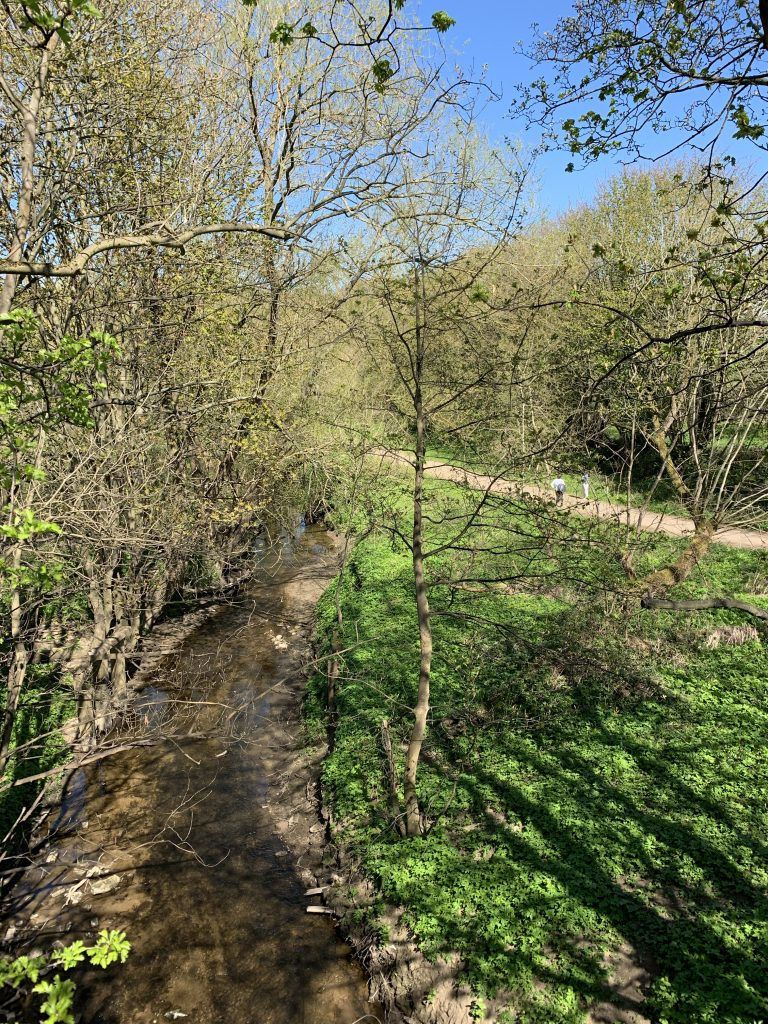 The Path from The River Wear to Old Durham Gardens (2)