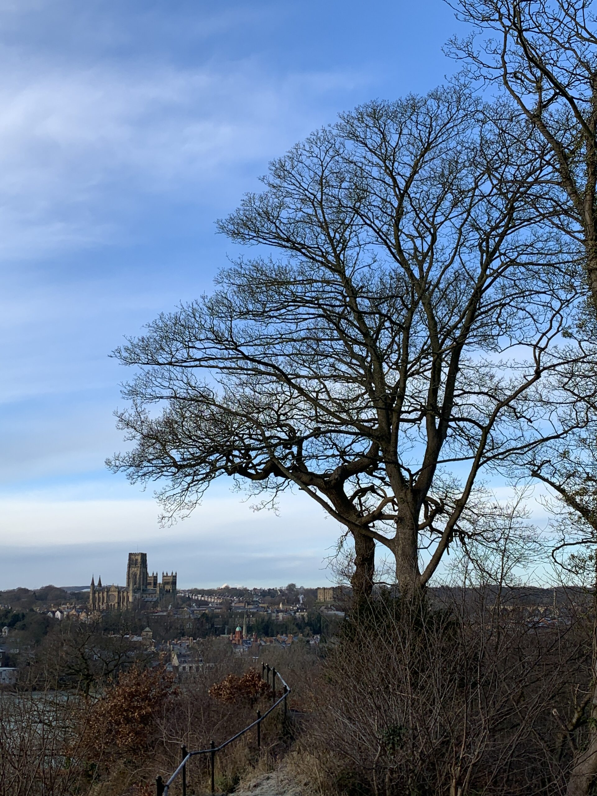 Durham Cathedral and the lonely tree